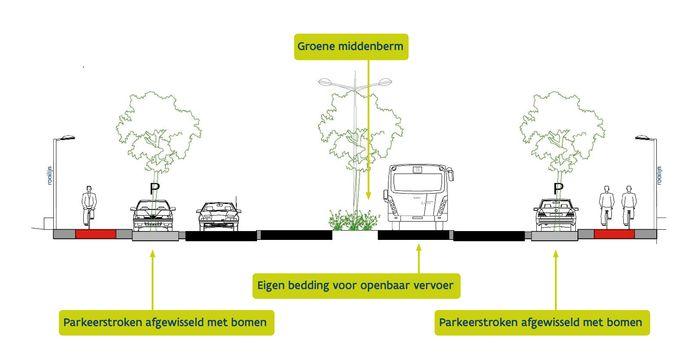 Buiten het centrum rijden bussen op een vrije busbaan in het midden, bomen zorgen nadien voor een groener karakter.