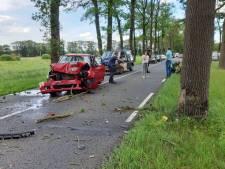 Automobilist knalt op boom in Dalfsen; auto in puin