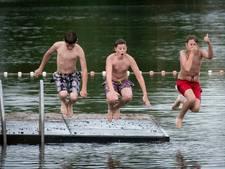 Negatief zwemadvies voor Walburgen door blauwalg