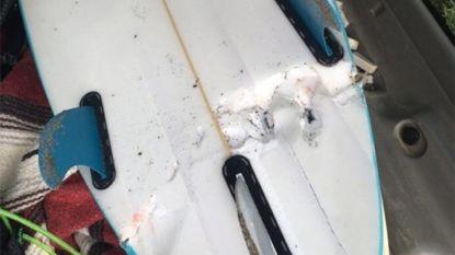 """Haai stort zich op surfer (19) in Californië: """"Mijn been zat in zijn muil"""""""