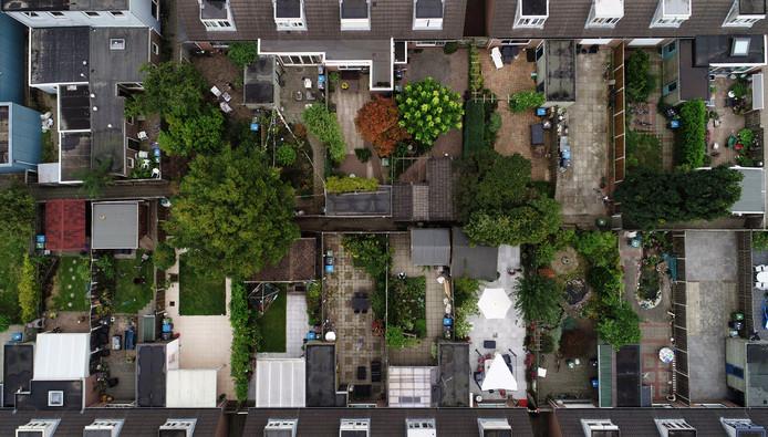 Tuinen van rijtjeshuizen zijn in de loop der tijd kleiner geworden. Het zijn ook vaker zogenoemde 'tegeltuinen' met weinig groen. Daardoor loopt het water minder goed weg en is er minder leven in de tuinen.