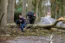 Frans Hooghiemstra en zijn vriend Matijs Borninkhof willen niet omrijden en springen met een fiets over een omgevallen boom.