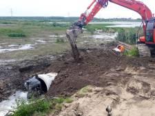 Moeras in nieuwe Dordtse Biesbosch valt droog, maar dat is eigenlijk wel handig
