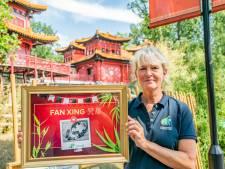 Pandaverzorgster schreef naam op briefje om 'm niet te vergeten: 'Einde van een spannende periode'
