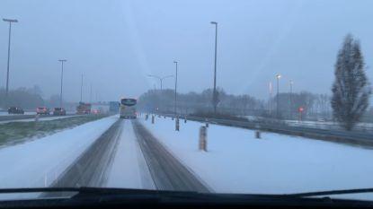 VIDEO. 'Sneeuwlapse' van autorit Gent naar Zedelgem