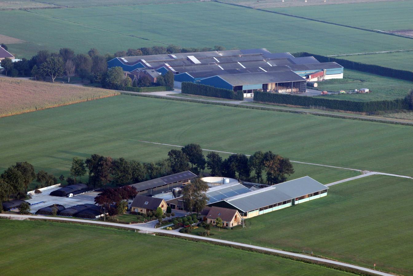 Archieffoto van De Knorhof (achterste bedrijf) in Erichem.