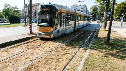 """Nieuwe tram naar Neder-Over-Heembeek: """"Verbinding met centrum is erg belangrijk voor bewoners"""""""