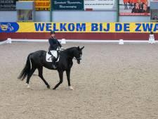 Ruiters kunnen zich in Genemuiden kwalificeren voor Paralympische spelen
