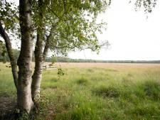 Plan Natura 2000-gebied Boetelerveld bij Haarle ter inzage