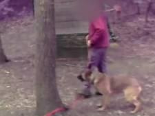 Van Vollenhoven wil vertrekken bij 'koninklijke' vereniging politiehonden door vermeende dierenmishandeling