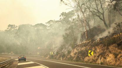 Gouverneur Californië vraagt federale steun in strijd tegen bosbranden