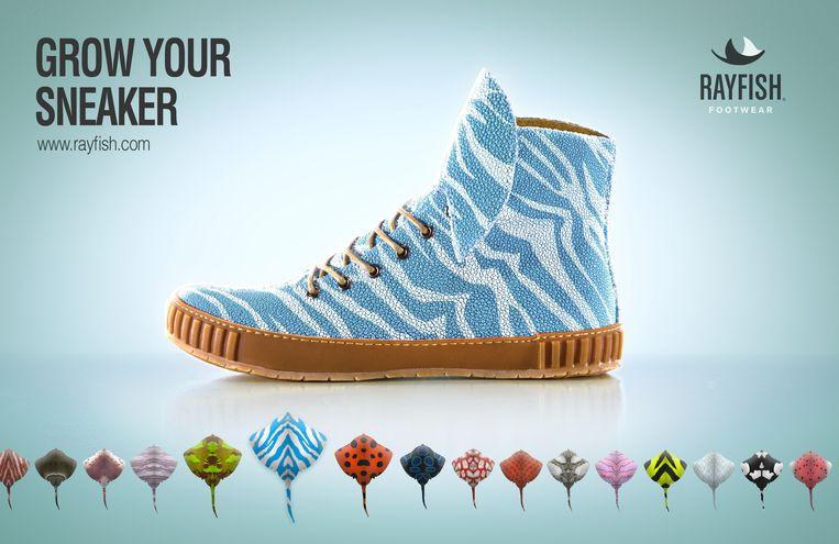 The Rise and Fall of Rayfish Footwear, een project van Next Nature Network. Een fictief bedrijf adverteert online met sneakers gemaakt van gekweekt roggenvel. Beeld null