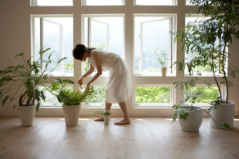 wat als je geen tuin hebt? Geen probleem, ook in potten en bloembakken kan je tuinieren. Tuinexpert Romke van de Kaa geeft tips.