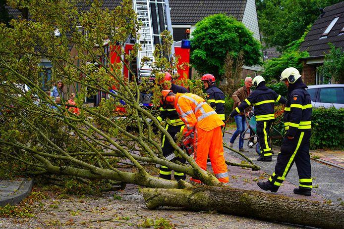 Door de harde wind dreigde de boom in Rijen om te vallen.