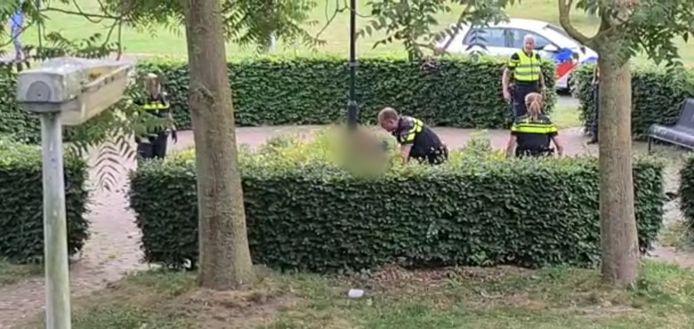 De arrestatie van de man in een plantsoen aan de Venusstraat in Hengelo.