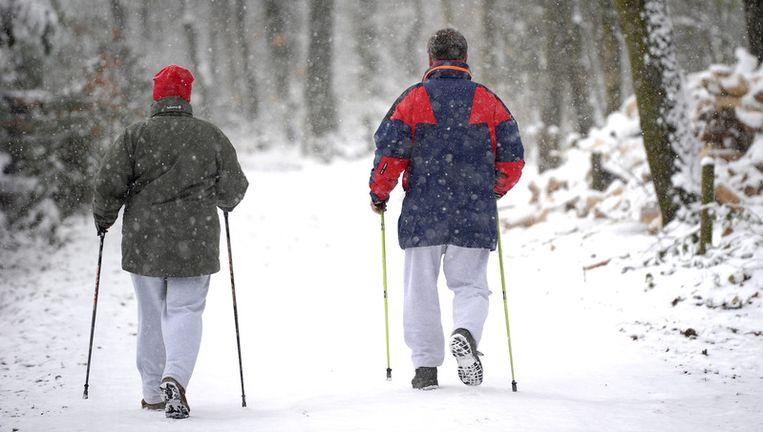 Wandelaars in de besneeuwde Vijlener bossen. © anp Beeld