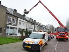 Brandweer rukt uit voor merel in schoorsteenkanaal in Breda, maar kan de vogel niet vinden