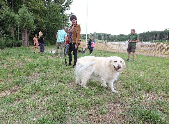 De honden amuseren zich in een hondenlosloopbos in Lembeek.