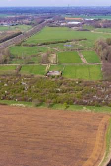 Soortenrijke natuur keert terug op De Gooren bij Hilvarenbeek, 'Straks hoor je hier de tjiftjaf weer zingen'