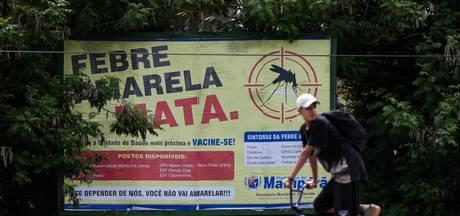 Braziliaanse staat roept noodtoestand uit wegens dodelijke gele koorts