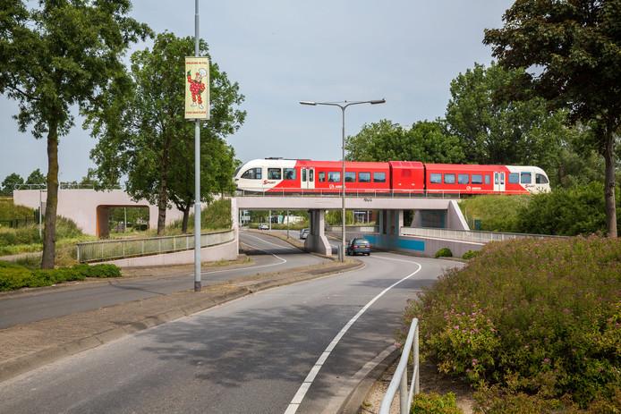 Trein van Arriva bij Tiel op archiefbeeld.