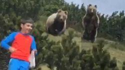 Bruine beer verrast 12-jarige jongen in de bergen, maar hij blijft ijzig kalm