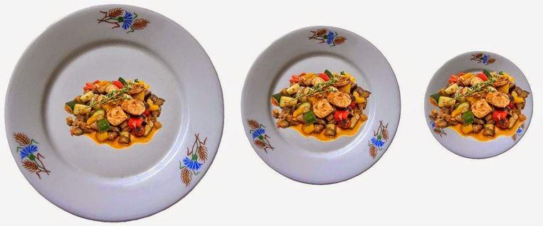 Dezelfde portie eten op een groot, middel en klein bord. Beeld