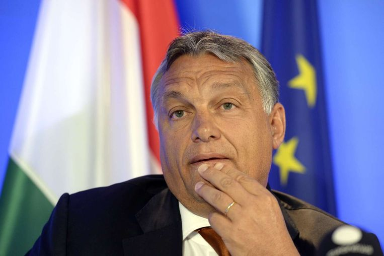 De Hongaarse premier Viktor Orban. Beeld afp