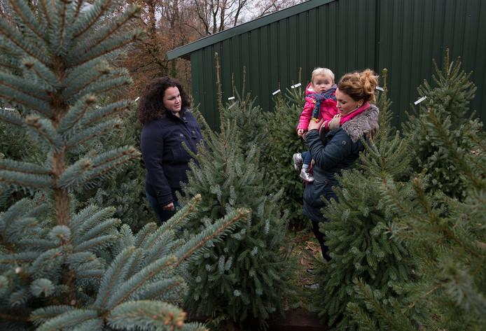 Karijn Wassink (rechts) koopt met haar zus Margje (links) en haar dochtertje Liv kerstbomen bij Marnix en Marian Muller.