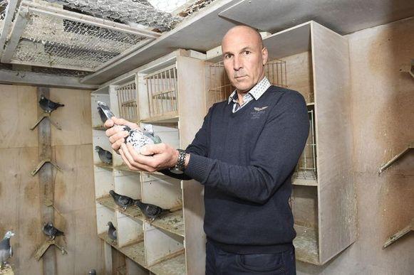 Duivenmelker Frans Bungeneers met enkele duiven die door de dieven werden achtergelaten.