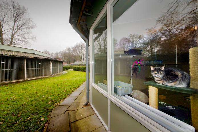 Het Dierentehuis aan de Oosterplas in Den Bosch.