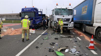VIDEO: Vrachtwagens botsen op Hazopweg, één chauffeur gewond