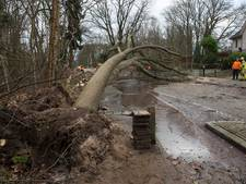 Stormschade in Doetinchem is 600.000 euro