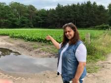 Buurvrouw Ossendrechtse kazerne zag slachtoffer in pick-up liggen: 'Heel heftig'