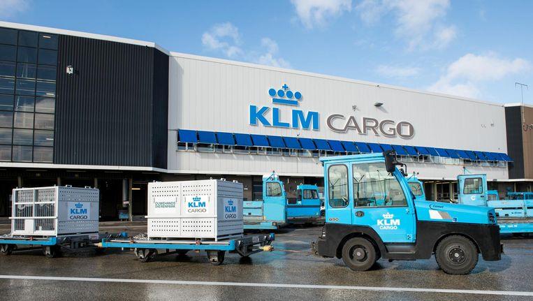 De reuzenpandas komen in speciale boxen aan op Schiphol. Beeld KLM Cargo