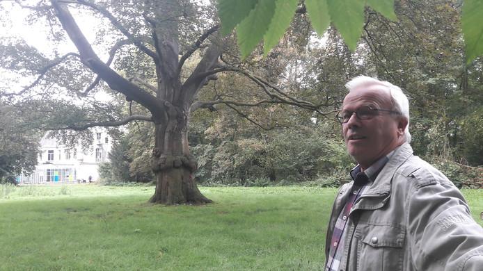 Fons van Dijk, burgerraadslid van GroenLinks in de gemeente Heusden maakt zich sterk om een monumentale rode beuk in de tuin bij het Roze Kasteel in Drunen te redden.