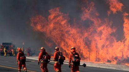 Californië vreest voor grotere bosbranden door krachtige wind, graf Ronald Reagan in gevaar