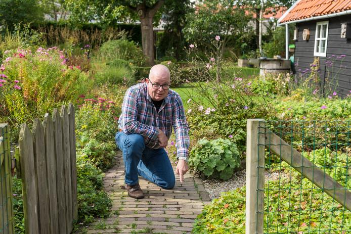 Ron van de Roer uit Dreischor vond vorig jaar september een Aziatische hoornaar in zijn eigen tuin.