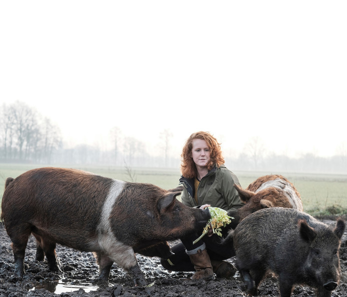 Inge Vleemingh tussen haar varkens.
