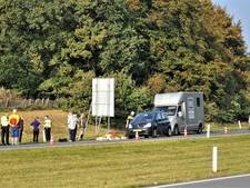 Auto schept losgebroken pony op N225 bij Heelsum