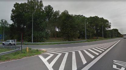 Omgevallen bomen aan afrit E40 worden geruimd na stormweer in maart