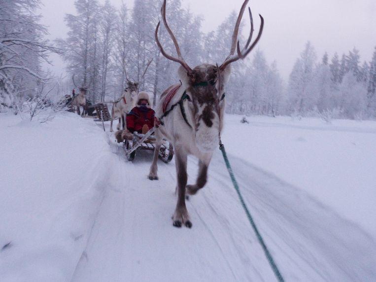 Noémi in Lapland.