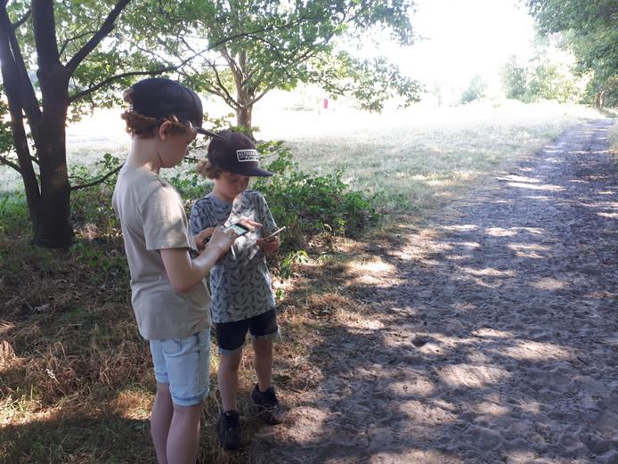 Flint (l) en Storm zijn druk met een Pokémon Go battle bij het Bomenpark.