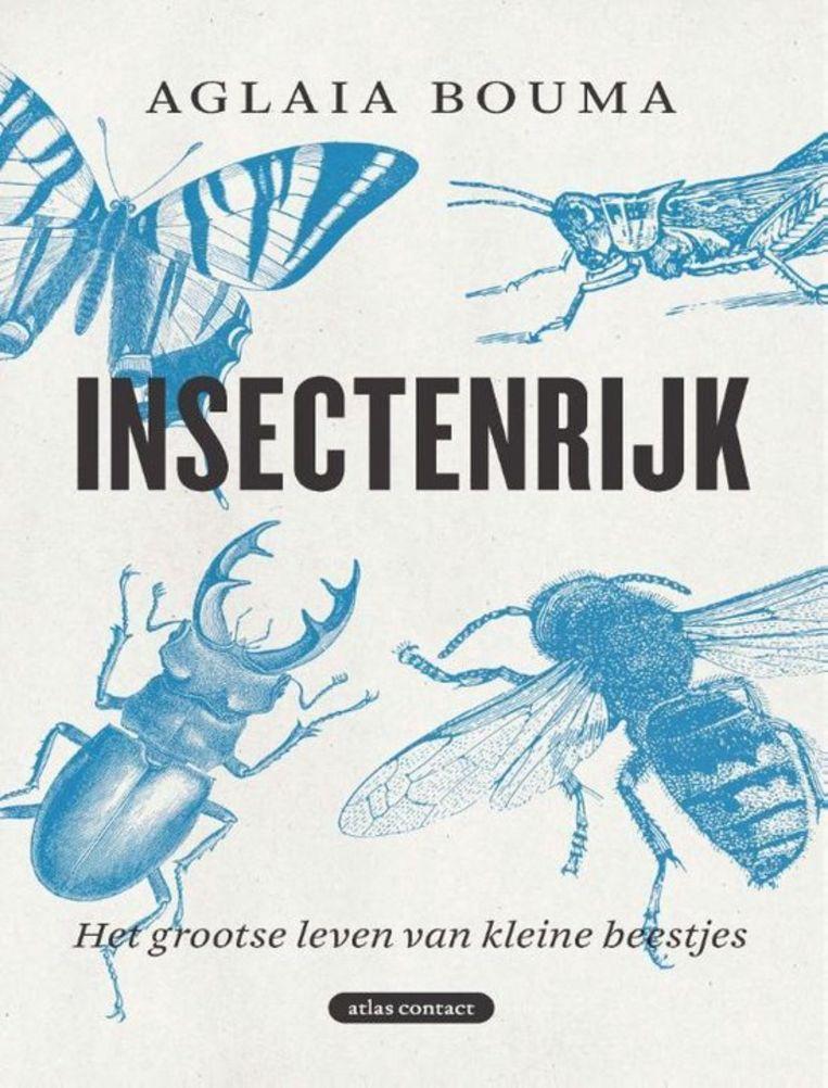 Aglaia Bouma, Insectenrijk – hoe mijn fobie een fascinatie werd, Uitgeverij Atlas Contact, €22,90 Beeld