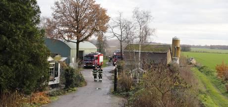 Biggen gewond bij brand in schuur met zestig varkens in Velp
