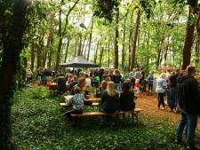 Nieuw festival in Daarle krijgt 'zeer waarschijnlijk' een vervolg