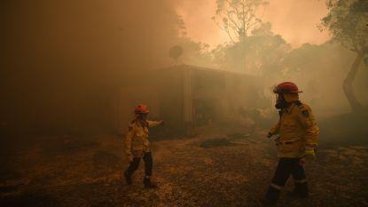 'Megabrand' bij Sydney: acht brandhaarden samengekomen