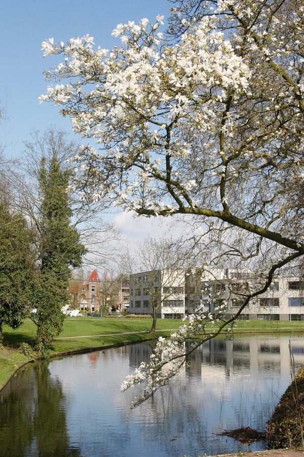 Op de achtergrond is zichtbaar de ronde vleugel van het WICC in Wageningen waar nu nieuwe kamers beschikbaar komen voor studenten en werkende jongeren
