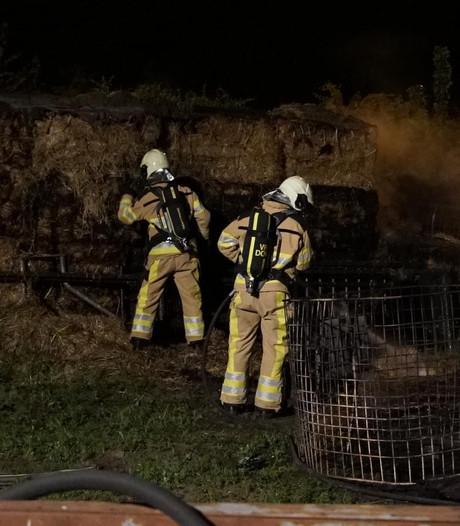 Brand gesticht bij boerderij Schalkhaar