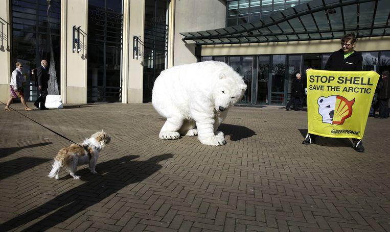 Greenpeace voert actie met een levensgrote ijsbeer voorafgaand aan de algemene aandeelhoudersvergadering van Shell bij het Circustheater in Scheveningen. Beeld ANP